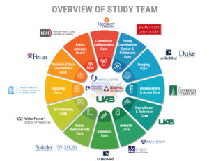 Overview of study team diagram