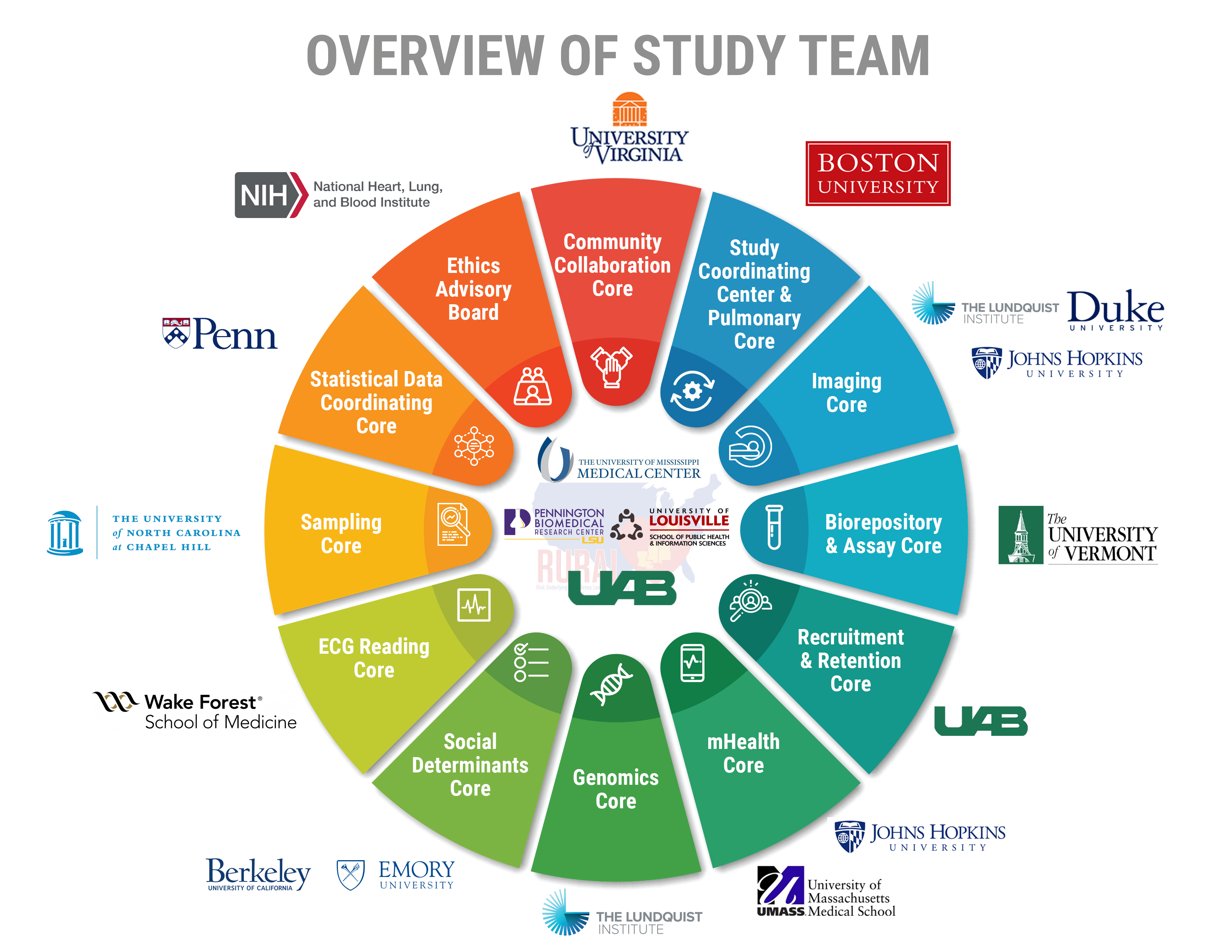 Overview of Study Team